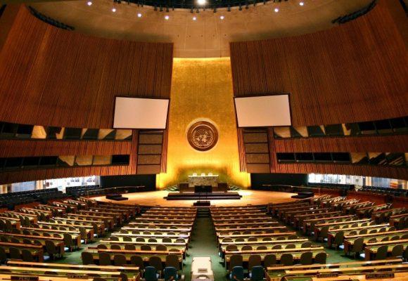 ELFAC dobio savjetodavni status u UN-u